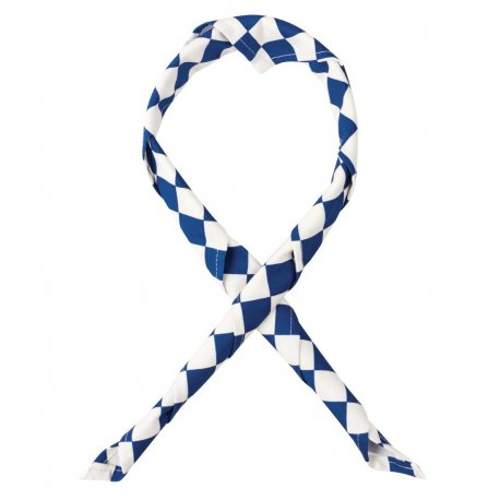 Whites Neckerchief Big Blue and White Check