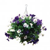 "Bolero 22"" Purple and White Pansy Ball"