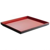APS Asia+  Red Tray GN 2/3